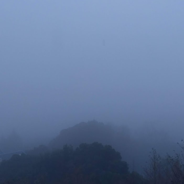 濃霧です……